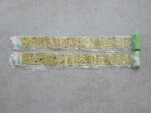 Lyctidae299