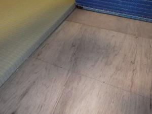 シロアリ被害の兆候が見られなかった床板