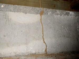 加圧注入木材ではシロアリ駆除はできません
