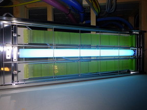 モニタリング用ライトトラップ