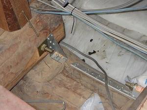 小屋裏で確認されたイタチ類の糞