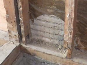 解体中物件で確認されたシロアリ被害