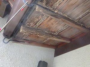 垂木にまで及ぶシロアリ被害