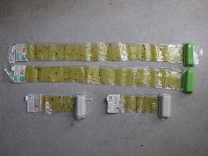 捕虫紙に捕獲されたアフリカヒラタキクイムシ