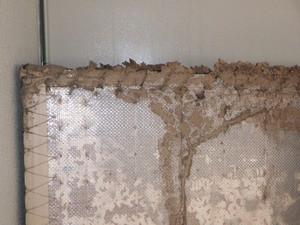 大掃除で確認されたシロアリ被害