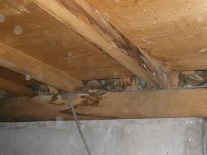 キッチン床下水漏れ跡
