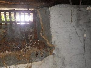 掃き出し窓付近床下で確認された蟻道
