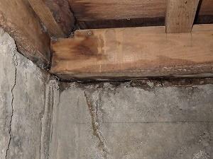 浴室土台付近のシロアリ被害