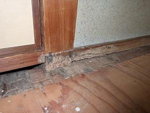 床上まで広がるシロアリ被害