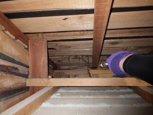天井側からの薬剤処理