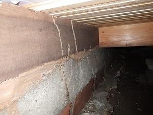 上框床下部分のシロアリ被害
