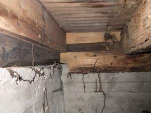 厄介な床下で確認されたシロアリ被害