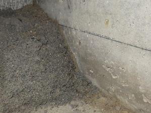 土間コンクリートクラックから立ち上がった蟻道
