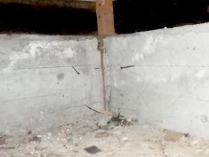 点検口を新設し確認された蟻道
