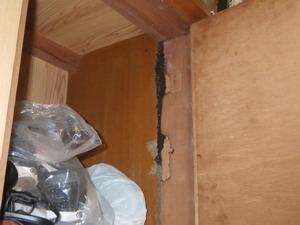 下駄箱上部に確認された蟻道