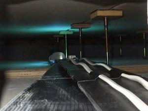床下に設置したライトトラップ